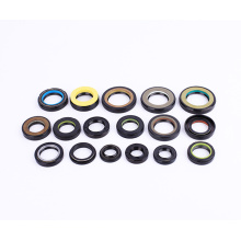 High Quality for Auto Oil Seal Industry Type VC Oil Seal supply to Congo, The Democratic Republic Of The Manufacturer