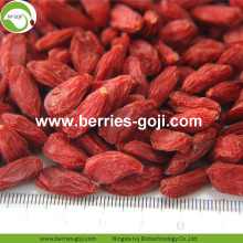 Factory Super Food Dried Best Goji Berries