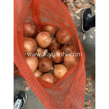 Fresh yellow onion on sale
