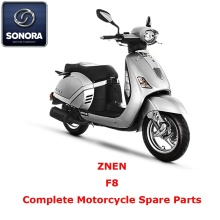 Best Price for for Supply Znen Scooter Starter Motor, Znen Scooter Carburetor, Znen Scooter CDI to Your Requirements ZNEN F8 Complete Scooter Spare Part export to Russian Federation Supplier