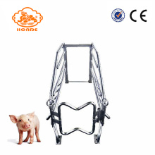 Hot sale reasonable price for Adjustable Tube Farrowing Crates Galvanized Tube Steel Farrowing Pig Cages export to Martinique Factory