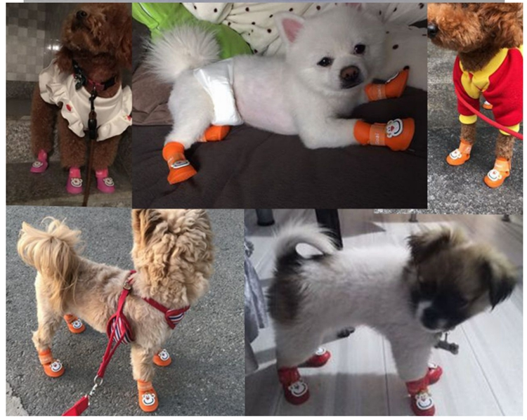 Silicone Dog Shoes