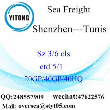 Shenzhen Port Sea Freight Shipping To Tunis