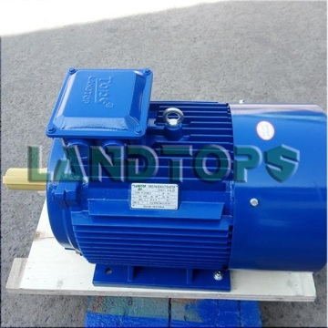 380V Y2 Three Phase 40HP Electric Motor Price