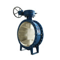 Double offset globoid method Butterfly valve