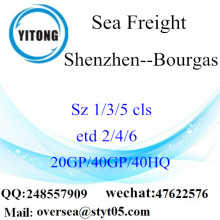 Shenzhen Port Sea Freight Shipping To Bourgas
