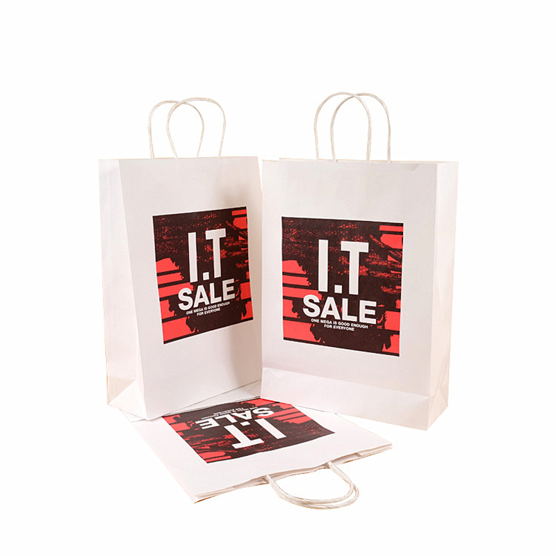 Coated Paper Printing Hot Stamping Shopping Paper Bag