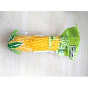 Yellow Sweet Corn high Grade for sale