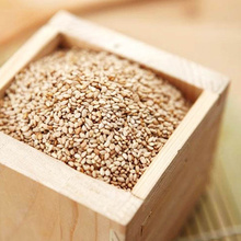 INDIAN WHITE NATURAL SESAME SEED