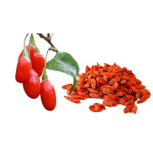 Certified freeze organic dried goji berries