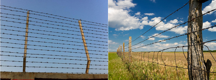 Double Barbed Wire