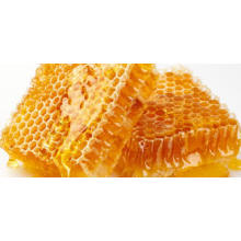 bulk sale raw and 100% pure organic honey