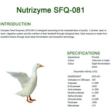 Professional Design for Animal Feed Complex Enzymes Complex enzymes for for poultry supply to Turks and Caicos Islands Exporter