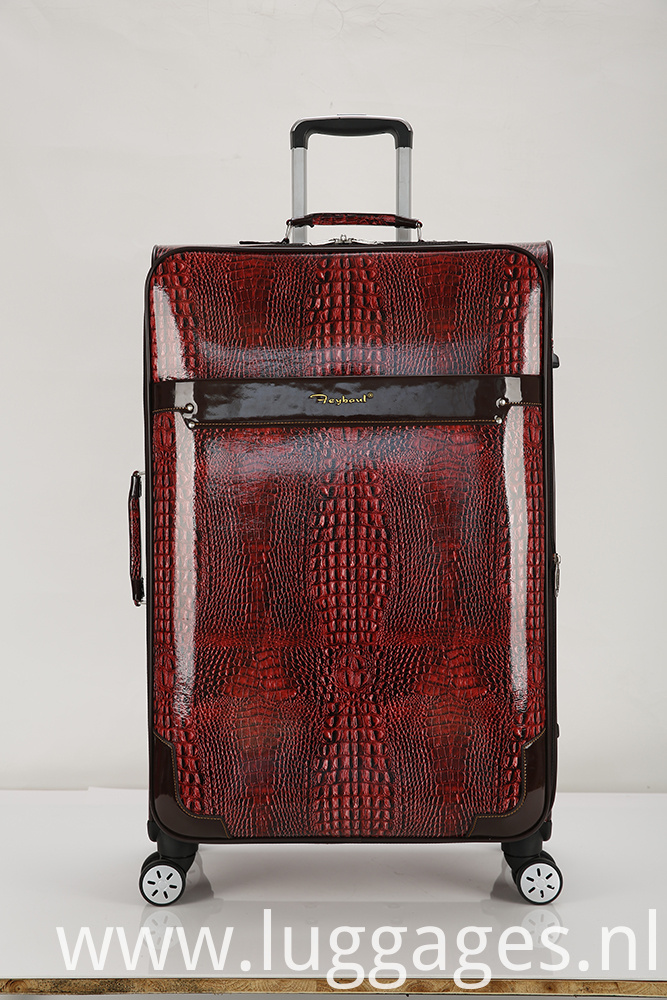 International Carry-on Spinner Trolley