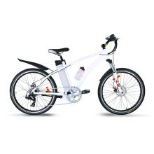 Fashion Alloy aluminum Electric Bicycle