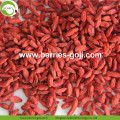 New Factory Dry Fruit Healthy Goji Berry