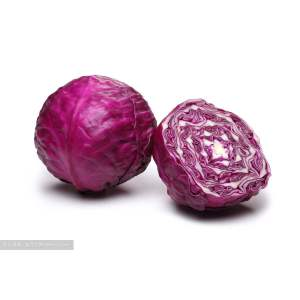 Purple Cabbage for Sale