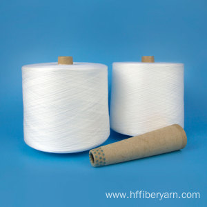 Cheapest Factory for 100% Polyester Spun Yarn Polyester Yarn Spun 100 Polyester Yarn 30/2 Textile Yarn supply to Mozambique Factories