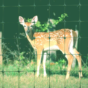 Plastic Stretched Square Mesh Deer Fence