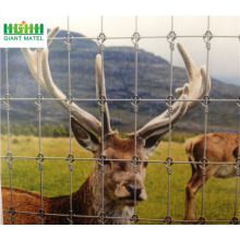 Glavanized PVC Coated Field Fence Deer Farm Fence