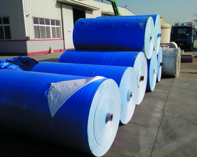 hot selling blue color PE tarp roll