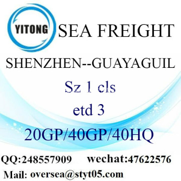 Shenzhen Port Sea Freight Shipping To Guayaguil