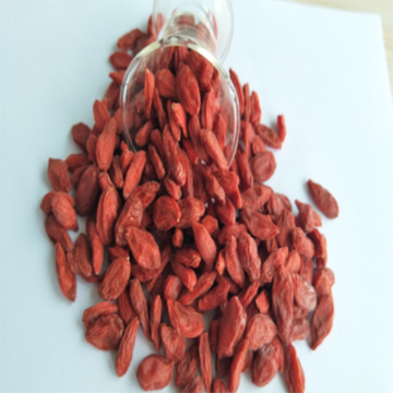 Export Ningxia Certified Dried goji berry/wolfberry