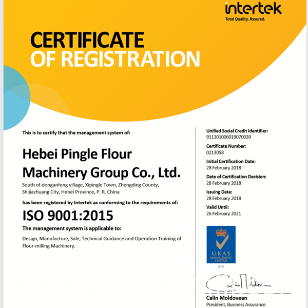 PINGLE Group ISO Certification