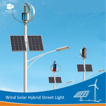 China Factories for Wind Solar Hybrid Street Light,Wind Generator Solar Street Light,Wind Mill Solar Street Light Manufacturers and Suppliers in China DELIGHT DE-WS05 Windmill Solar System LED Street Light supply to Bhutan Exporter