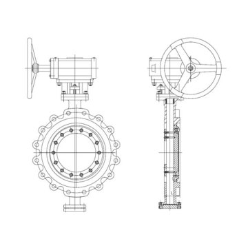 High Performance Butterfly Valve