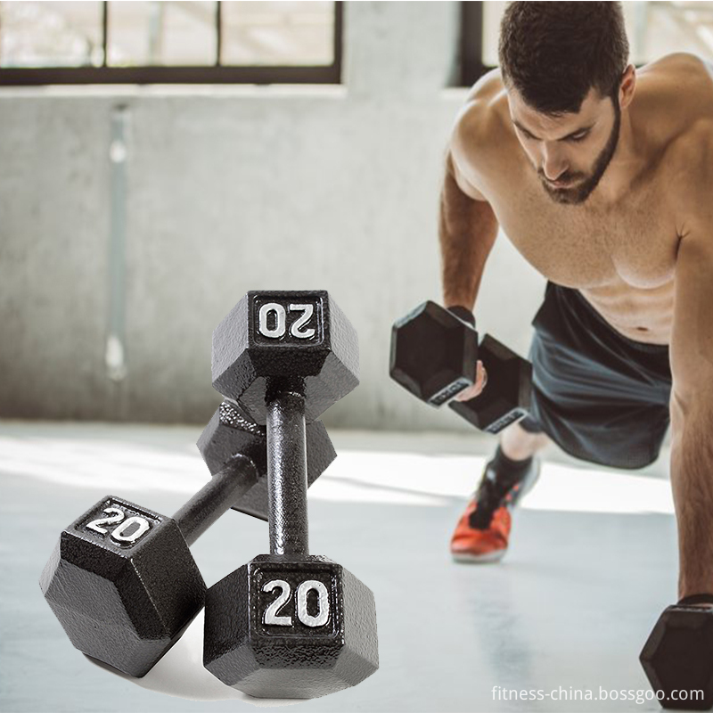 20 Kg Cast Iron Dumbbells