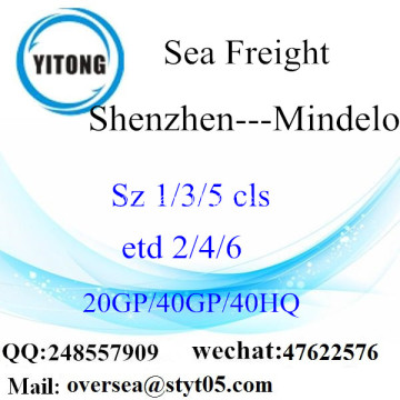 Shenzhen Port Sea Freight Shipping To Mindelo