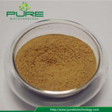Herbal Extract Organic Maca Root Extract/Maca Root Powder