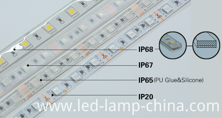 ip strip