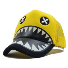 Online Exporter for China Baseball Cap,Mesh Baseball Cap,Adult Plain Baseballcap,Children Printing Baseball Cap Manufacturer Baseball cap factory premium baseball cap supplier export to United States Manufacturer