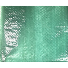 Personlized Products for Heavy Duty Green PE Tarpaulin Green light duty PE tarpaulin supply to France Wholesale