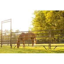 Best quality galvanized pipe horse fence panels
