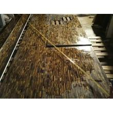 Yellow tiger eye countertop