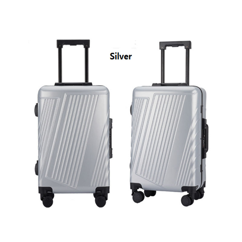 Silver pc luggage