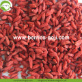 Wholesale Healthy Natural Eu Standard Goji Berry