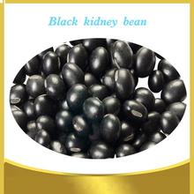 chinese black kidney beans new Crop