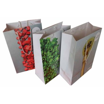 Custom paper gift shopping bag with handle
