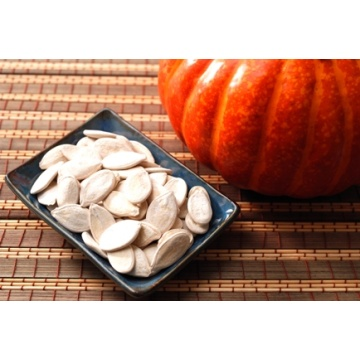 Agriculture Food Snow White 13cm Pumpkin Seed