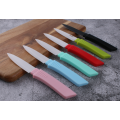 Professional Ceramic Paring knife