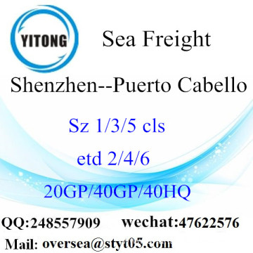 Shenzhen Port Sea Freight Shipping To Puerto Cabello