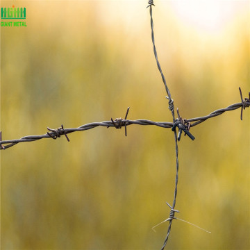 PVC Coated Barbed Wire Stainless Steel Barbed Wire