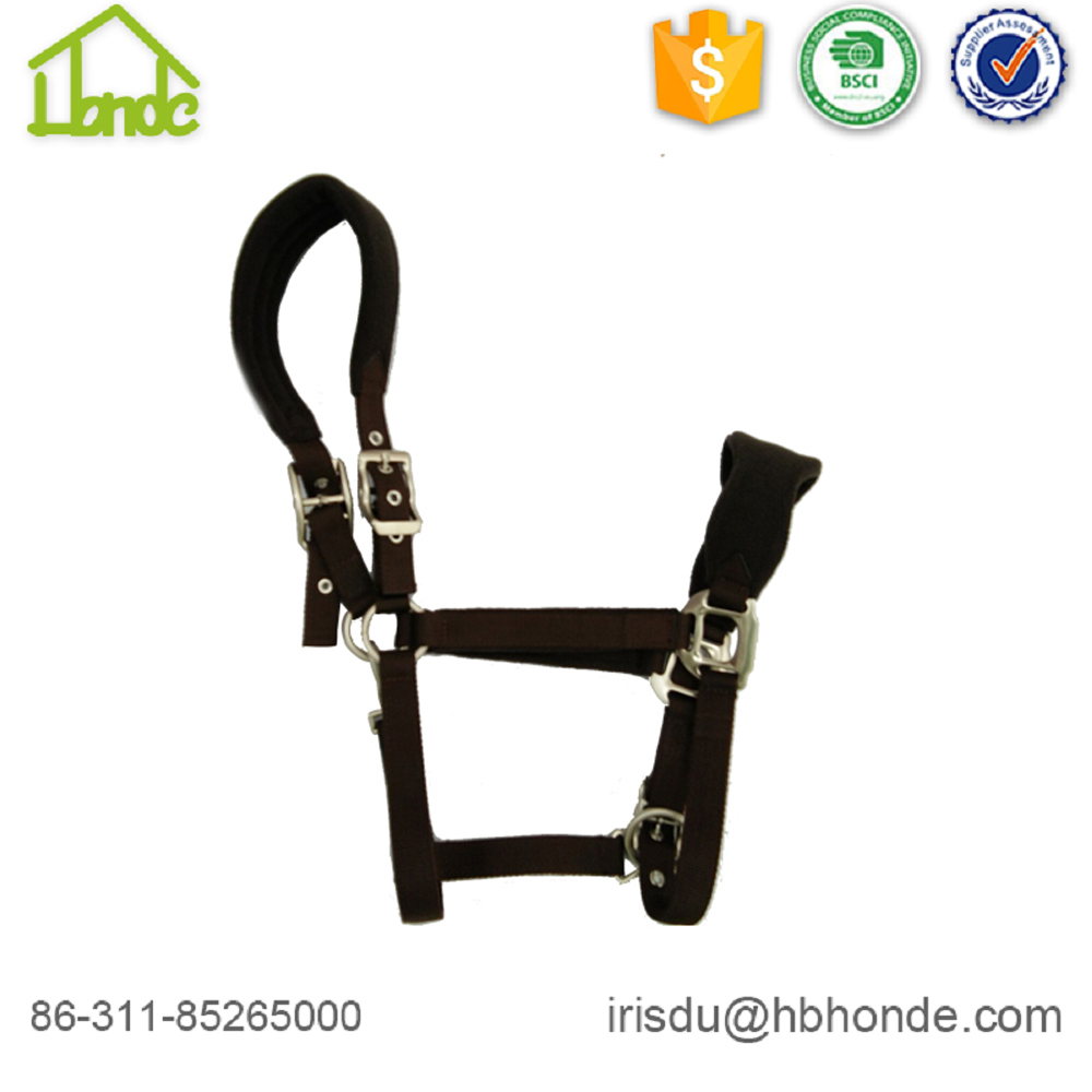 brown horse halter