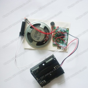 Motion Sensor Recordable Module, Voice Chip
