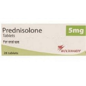 prednisolone 8 month old