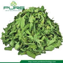Moringa Oleifera Dried Leaves 100% Natural